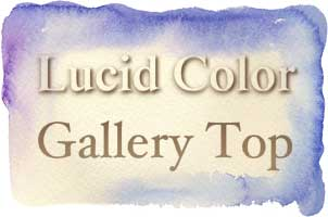 Lucid Color Gallery Top